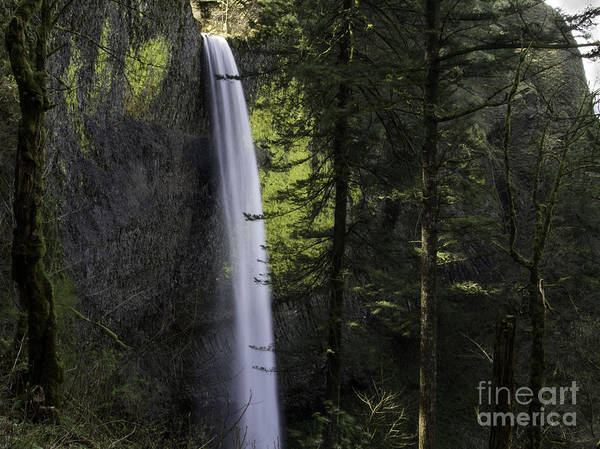 Latourell Falls Poster featuring the photograph Latourell Falls by Tim Moore