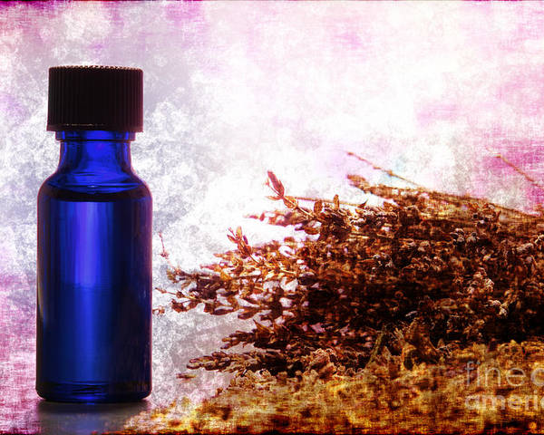 Aromatherapy Poster featuring the photograph Lavender Essential Oil Bottle by Olivier Le Queinec