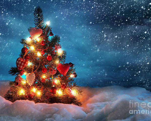 Led Christmas Lights Poster featuring the photograph Led Christmas Lights by Boon Mee