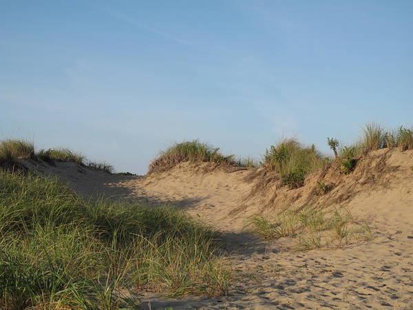Landscape Poster featuring the photograph Lieutenant Island Dunes by Barbara McDevitt