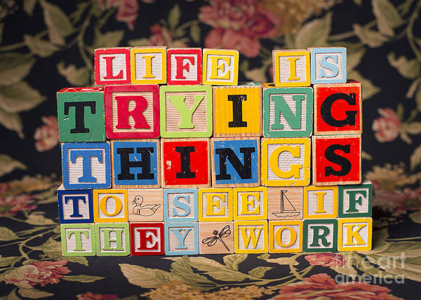 Life Is Trying Things To See If They Work Poster featuring the photograph Life Is Trying Things To See If They Work by Art Whitton