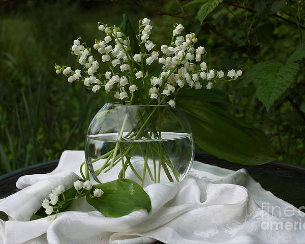 Lily-of-the-valley Poster featuring the photograph Lily-of-the-valley Bouquet by Luv Photography