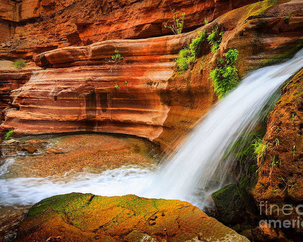 America Poster featuring the photograph Little Deer Creek Fall by Inge Johnsson