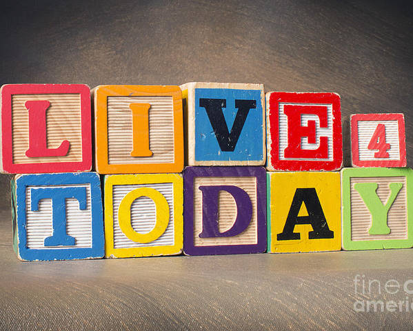 Live For Today Poster featuring the photograph Live For Today by Art Whitton