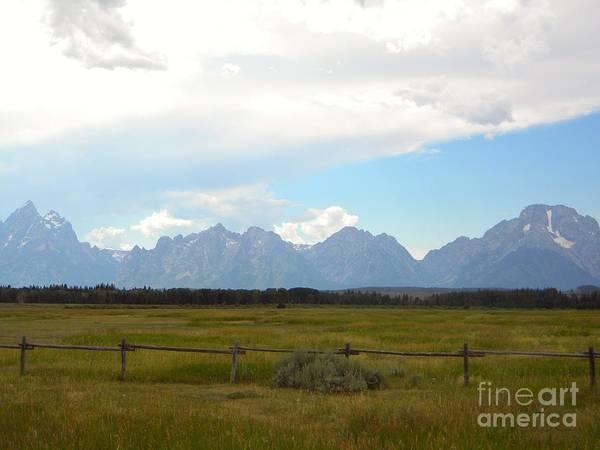 Prairie Poster featuring the photograph Lone Wilderness by Kim Petitt