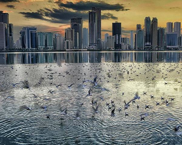 Outdoors Poster featuring the photograph Lonely Boat At Shore With Sharjah by David Santiago Garcia