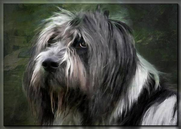 Animal. Dog Poster featuring the digital art Looking A Little Sad by Gun Legler