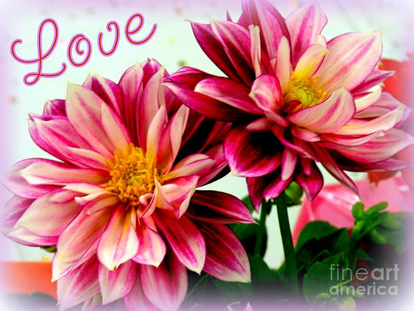 Love And Flowers Photo Poster featuring the photograph Love And Flowers by Kathy White