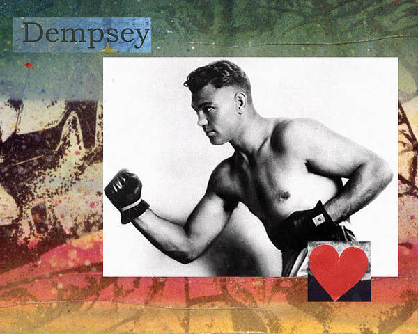 Dempsey Poster featuring the photograph Love And War Dempsey by Mary Ann Leitch
