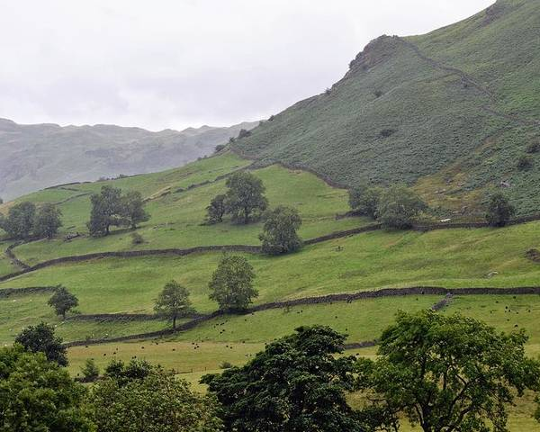 England Poster featuring the photograph Lovely Lake District by Michael Biggs
