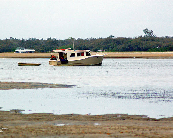 Boat Poster featuring the photograph Low Tide by Adriana Crosse