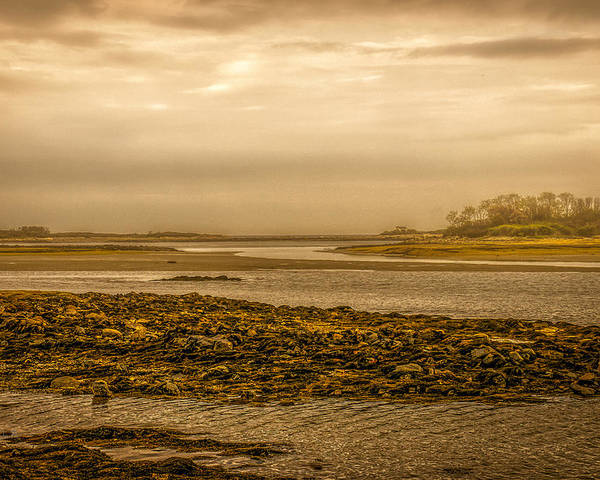 Atlantic Ocean Poster featuring the photograph Low Tide Cape Porpoise Maine by Bob Orsillo