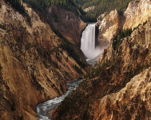 Yellowstone National Park Poster featuring the photograph Lower Falls Of Yellowstone by Leda Robertson