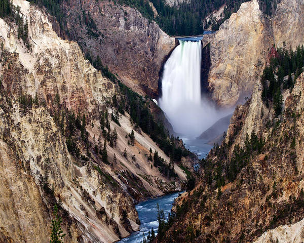 Poster featuring the photograph Lower Yellowstone Falls by Bill Gallagher