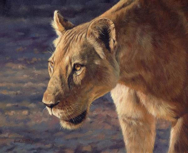 Lioness Poster featuring the painting Luangwa Princess by David Stribbling