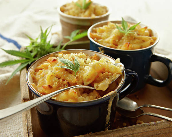 Social Issues Poster featuring the photograph Macaroni And Cheese Infused With by Lew Robertson