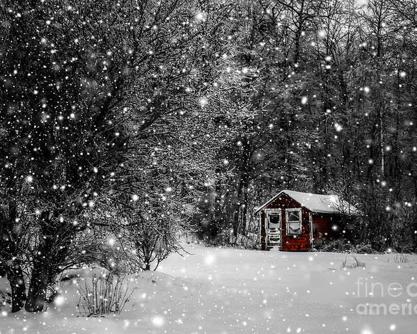 Winter Poster featuring the photograph Made In Maine Winter by Brenda Giasson