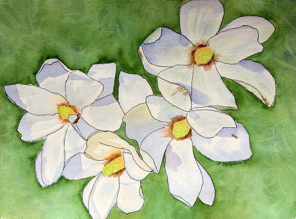 Flower Poster featuring the painting Magnolia Blossoms by Patricia Novack