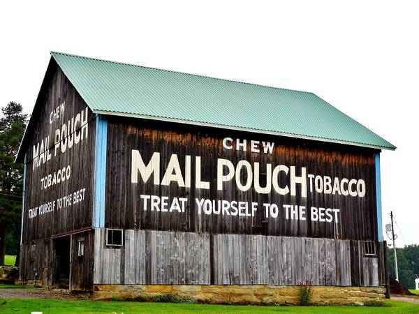 Mail Pouch Tobacco Barn Poster featuring the photograph Mail Pouch Tobacco Barn II by Anthony Thomas