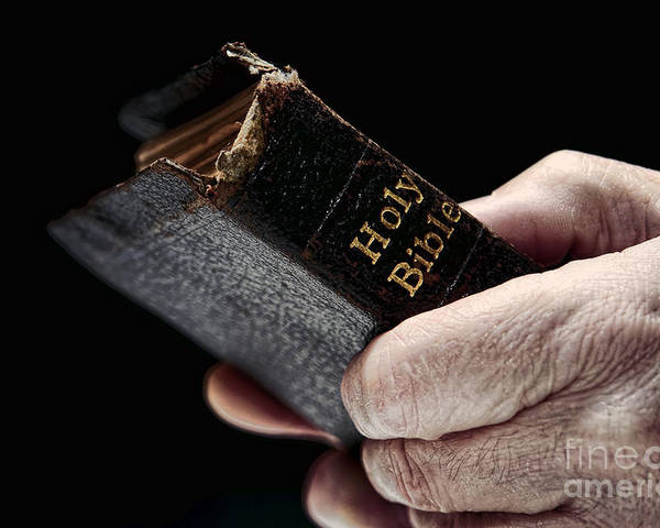 Man Poster featuring the photograph Man Hands Holding Old Bible by Olivier Le Queinec