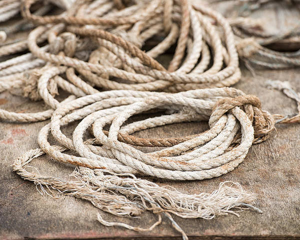 Ropes Poster featuring the photograph Marine Ropes Beige And Brown Colors by Matthias Hauser