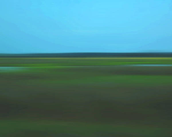 Abstract Poster featuring the photograph Marsh Blur by Suzanne Gaff