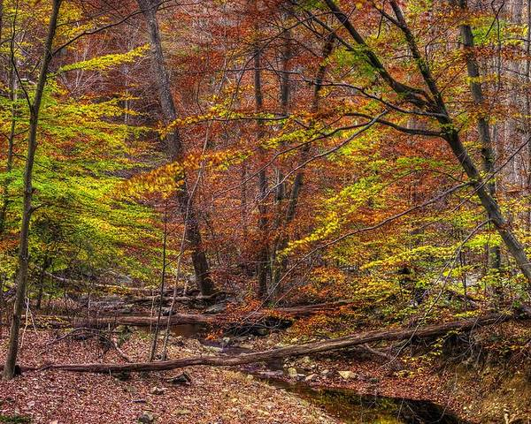 Maryland Poster featuring the photograph Maryland Country Roads - Autumn Colorfest No. 8 - Catoctin Mountains Frederick County Md by Michael Mazaika