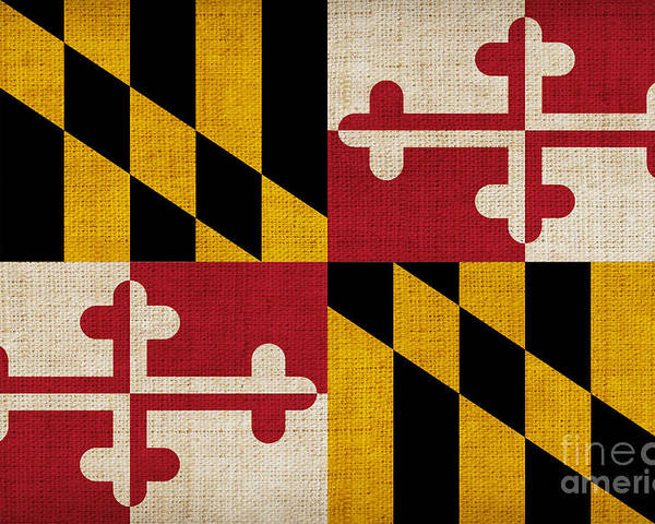 Maryland Poster featuring the painting Maryland State Flag by Pixel Chimp