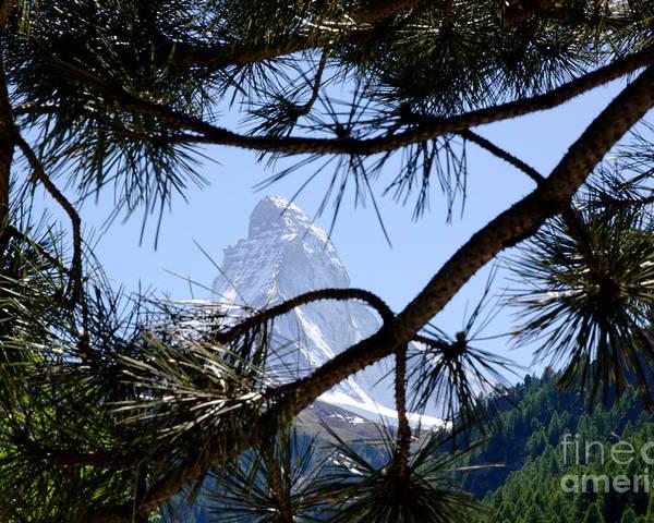 Mountains Poster featuring the photograph Matterhorn by Mats Silvan