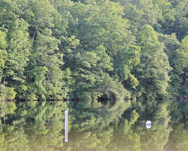 Reflections Poster featuring the photograph Mckamey Lake Calm Reflections by Robin Vargo