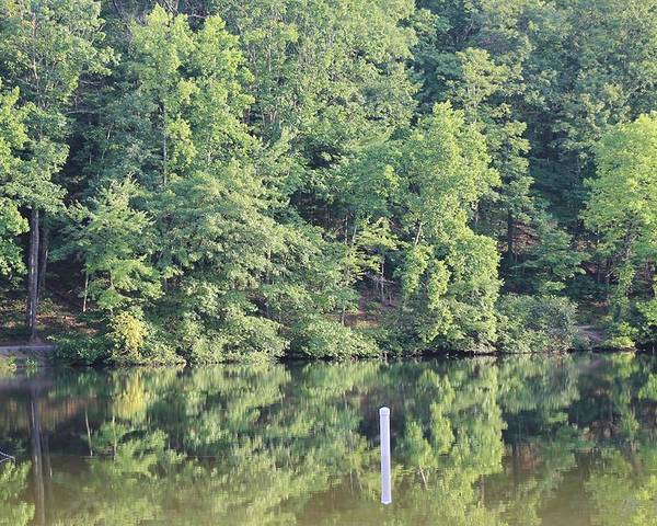 Reflections Poster featuring the photograph Mckamey Lake Serenity by Robin Vargo