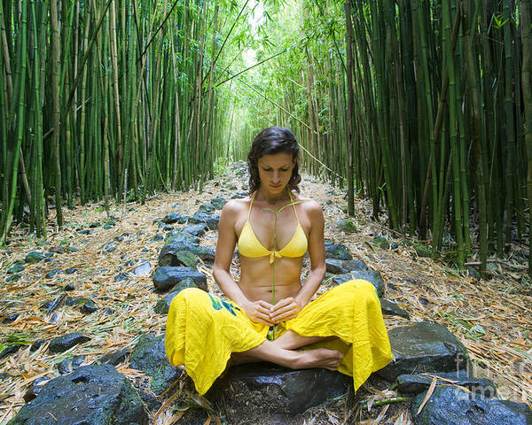 Bamboo Poster featuring the photograph Meditation In Bamboo Forest by M Swiet Productions