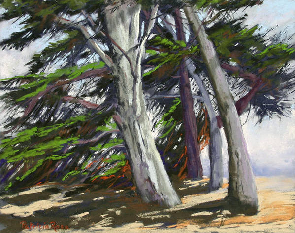 Plein Air Pastel Landscape Painted In Ft. Bragg Poster featuring the pastel Mendocino Cypress by Patricia Rose Ford