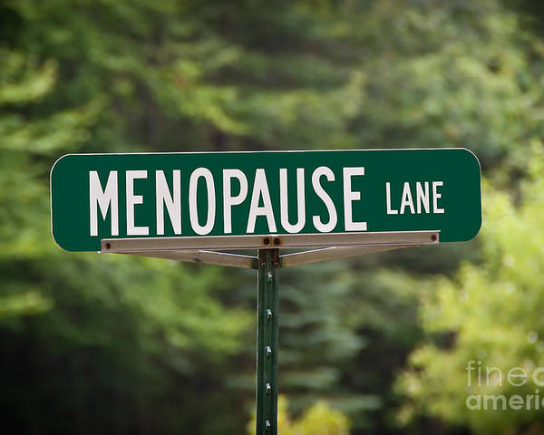 New York Poster featuring the photograph Menopause Lane Sign by Sue Smith