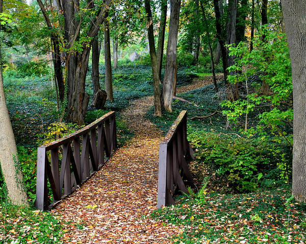 Landscape Poster featuring the photograph Metroparks Pathway by Frozen in Time Fine Art Photography