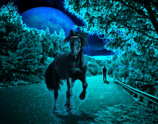 Horse Poster featuring the photograph Midnight Vision by Jim Painter