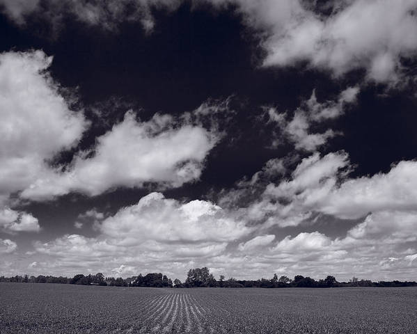 Cloud Poster featuring the photograph Midwest Corn Field Bw by Steve Gadomski