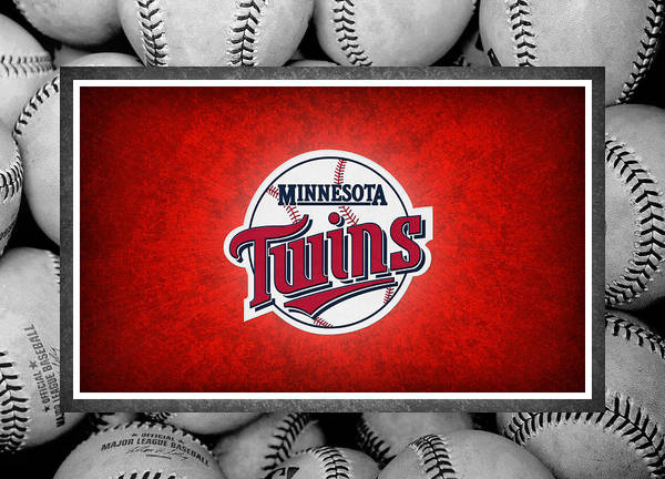 Twins Poster featuring the photograph Minnesota Twins by Joe Hamilton