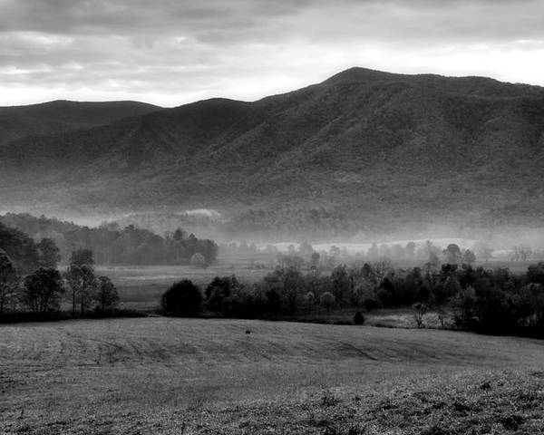 Misty Mountain Morning Poster featuring the photograph Misty Mountain Morning by Dan Sproul