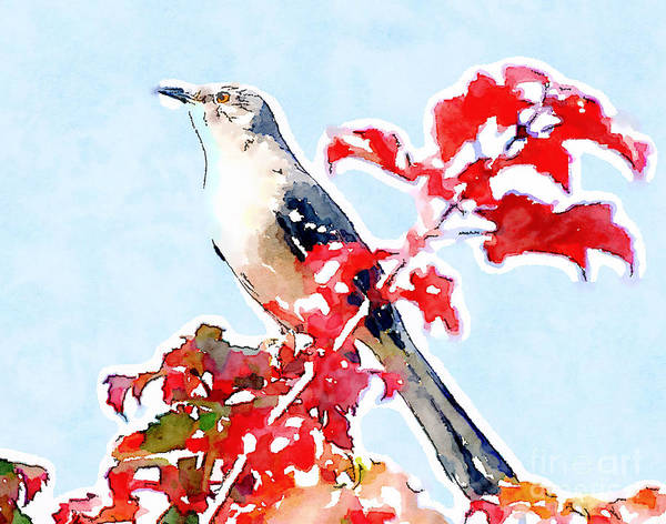 Mockingbird Poster featuring the photograph Mockingbird In The Leaves - Watercolor by Kerri Farley