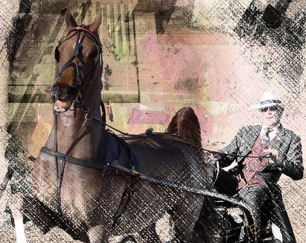 Equine Art Prints For Sale Poster featuring the mixed media Moments by Ernestine Manowarda