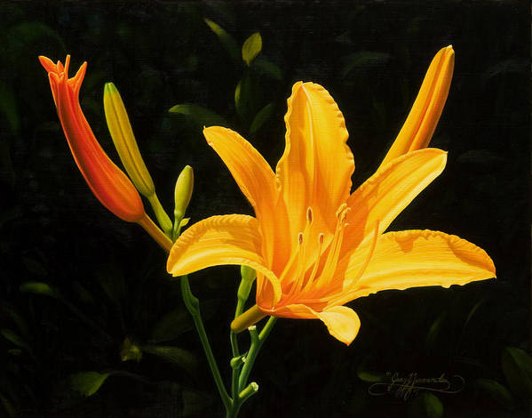 Floral Poster featuring the painting Monikas Lily by Gary Hernandez