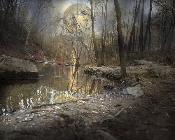 Full Poster featuring the photograph Moon Camp by Betsy Knapp