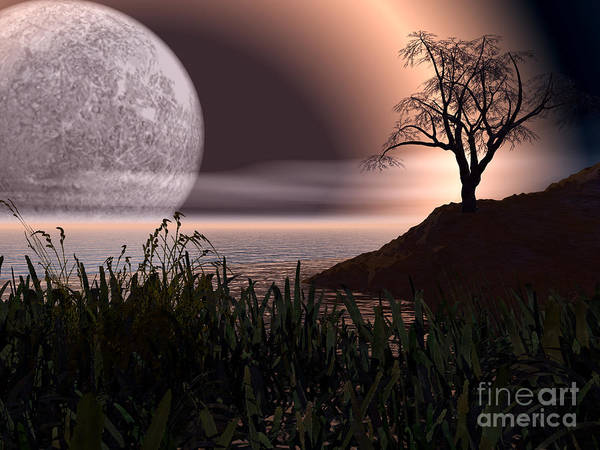 Cove Poster featuring the photograph Moon Rise On Another World by Alan Russo