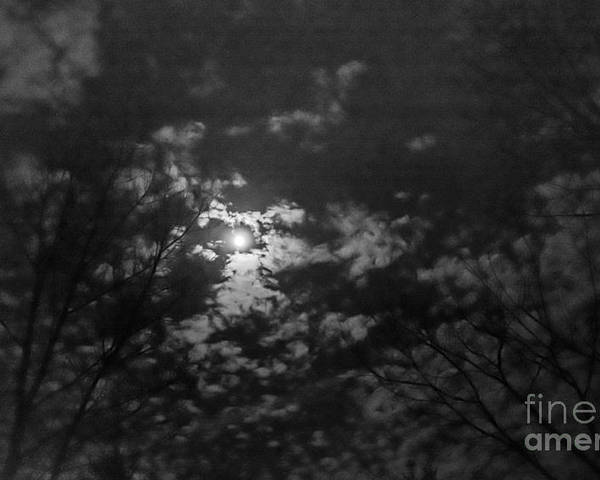 Poster featuring the photograph Moonlit Sky by Cheryl Baxter