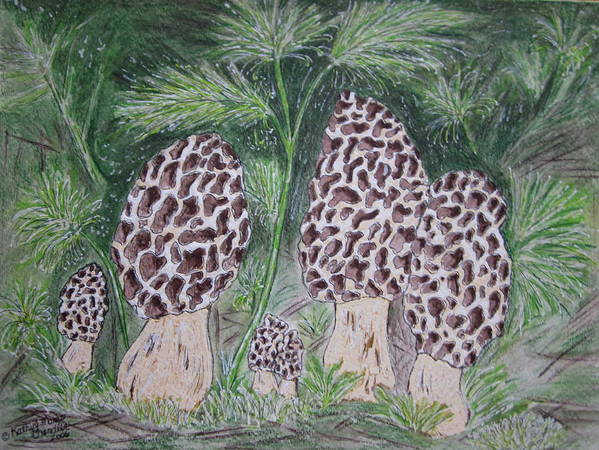 Morel Poster featuring the painting Morel Mushrooms by Kathy Marrs Chandler