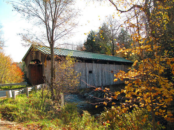 Covered Bridge Poster featuring the photograph Morgan Bridge 2 by Barbara McDevitt