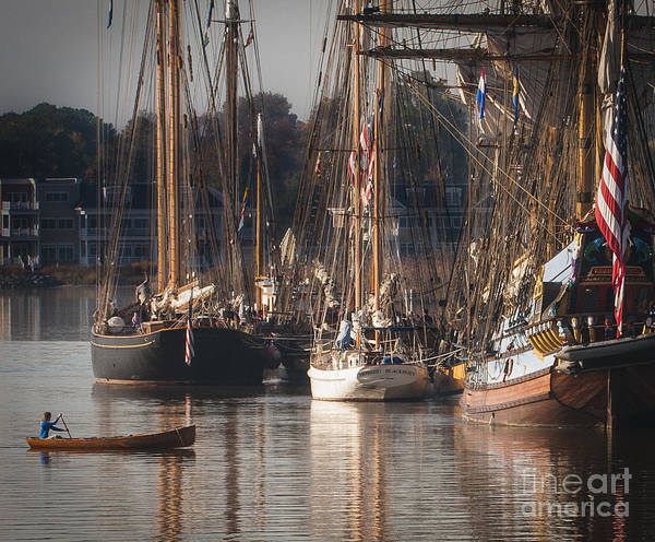 2013 Poster featuring the photograph Morning Light - Chestertown Downrigging Weekend by Lauren Brice