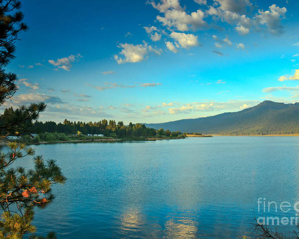Idaho Poster featuring the photograph Morning Reflections On Lake Cascade by Robert Bales