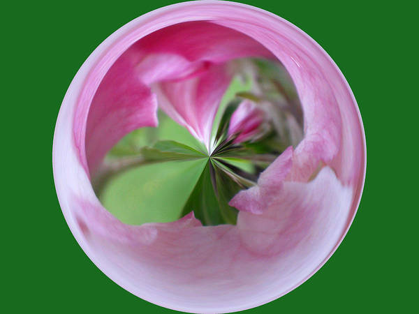 Photo Poster featuring the photograph Morphed Art Globe 11 by Rhonda Barrett
